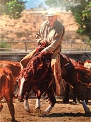 Organic Horse, Dog and Cat Products @ Natural Sage® & Jerry Livesey, Co-owner